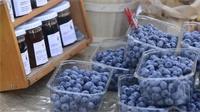 Les marchés d'été dans les Vosges