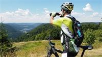 Covid-19 : les sorties et activités de loisirs en forêt sont interdites