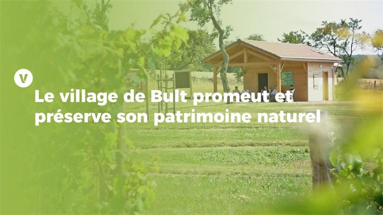 Trophées de la transition écologique: Un verger conservatoire pour les générations futures à Bult