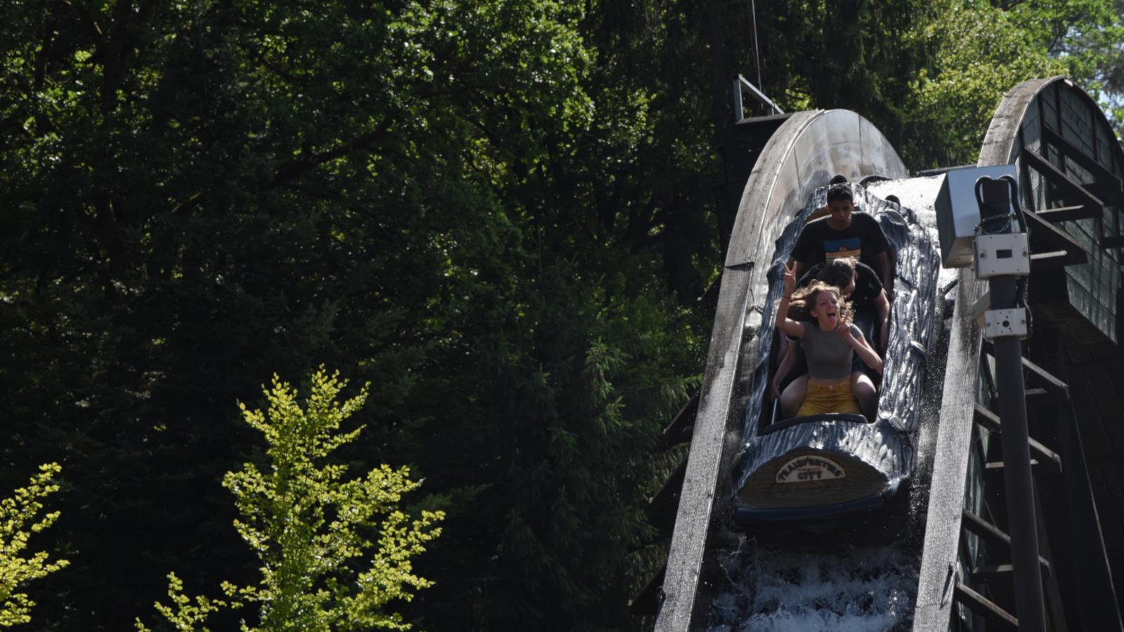 En 2011, le Timber Drop débarque dans le parc et s'engage en faveur de la reforestation dans le monde.