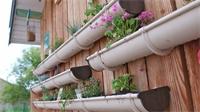 Comment et pourquoi mettre en place un mur végétal?