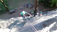 Climbing Woody : une entreprise qui grimpe !