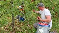 Covid : Aide en faveur des bénéficiaires du RSA et de l'Agriculture