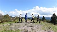 Transition écologique : quel bilan pour les Vosges ?