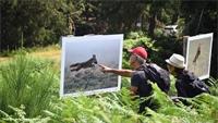Les expos photos en plein air ont le vent en poupe