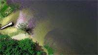 Plongez au pays des merveilles du lac de Bouzey