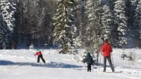 Noël : Une clientèle touristique bien présente dans les Vosges