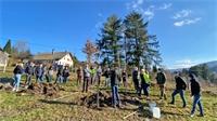 Près de 400 personnes formées à la plantation d'arbre fruitiers