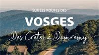 Des crêtes à Domremy, sillonnez les Vosges !